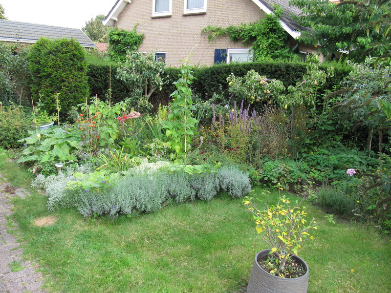 septermber zijtuin 17sep